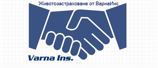 Животозастраховане – новата сфера за реализация в България
